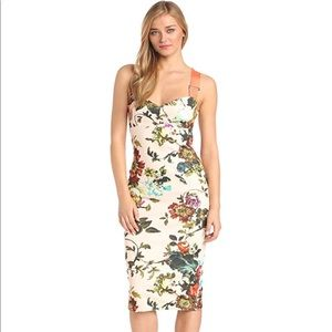 NWOT Ted Baker London Amabel Floral Sheath Dress